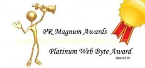 Platinum Web Byte Award